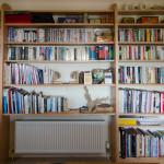 Bookshelf Wide Morcombelake Broadoak Joinery